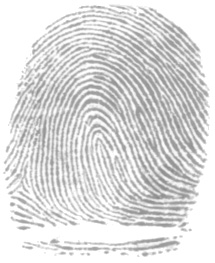 fingerprintleft loop